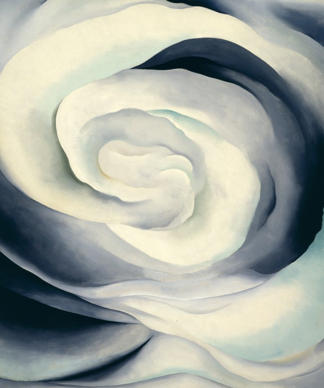 Georgia O'Keeffe – Abstraction White Rose  - wf15284