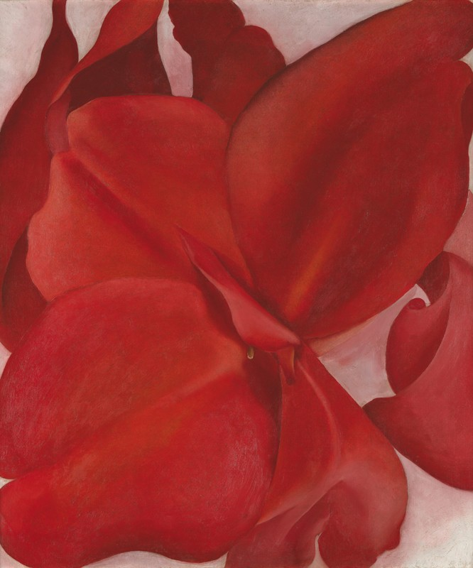 Georgia O'Keeffe – Red Cannas - wf15282