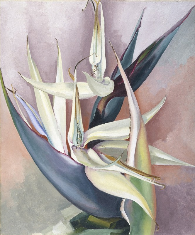 Georgia O'Keeffe – White Bird of Paradise - wf15296
